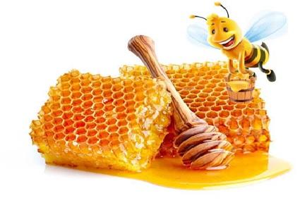 عسل در درمان بیماری های دستگاه گوارشی تاثیر بسزایی دارد.
