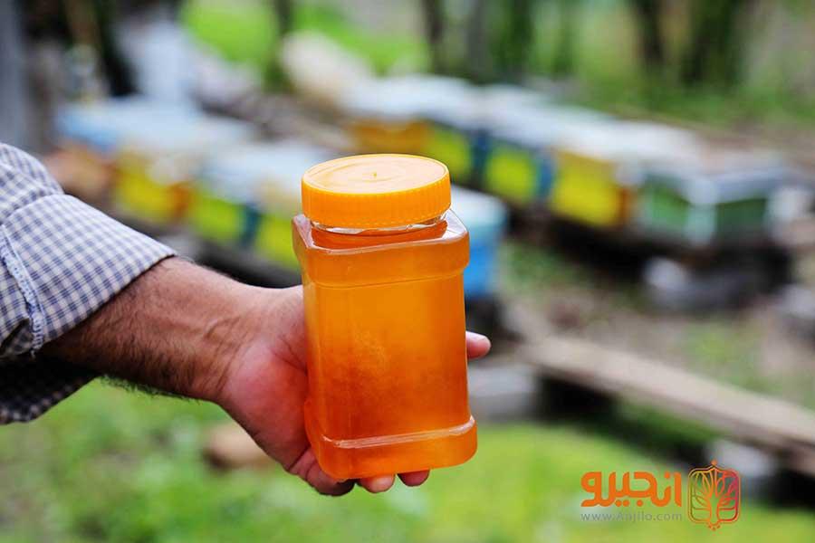 عسل شهدی طبیعی که توسط زنبورعسل تولید می شود